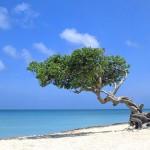 Los mejores destinos de vacaciones en el Caribe