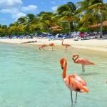 Recorra el Caribe a bordo del Carnival Breeze