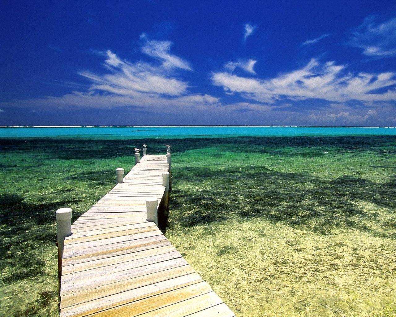 Buceo en el Caribe – los mejores lugares para los aficionados III